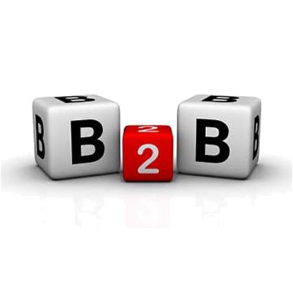 De Grote Linthorst B2B diensten